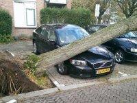 Eerste inventarisatie van stormschade door het Verbond van Verzekeraars geschat op minstens 13 miljoen euro